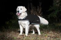 Rambo Wasserfeste Fleece-Hundedecke schwarz